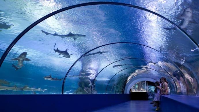 رحلة انطاليا اكواريوم - المتحف المائي في انطاليا
