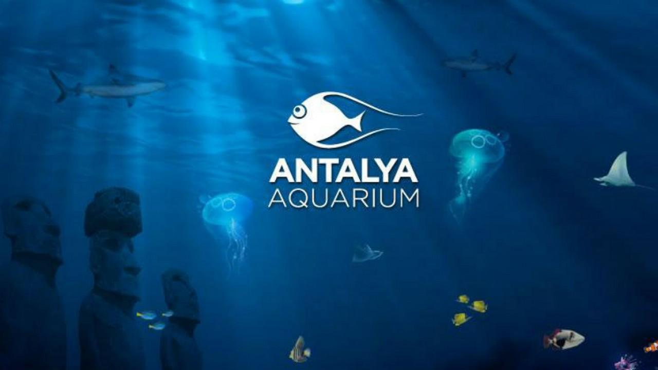 المتحف المائي | أنطاليا اكواريوم