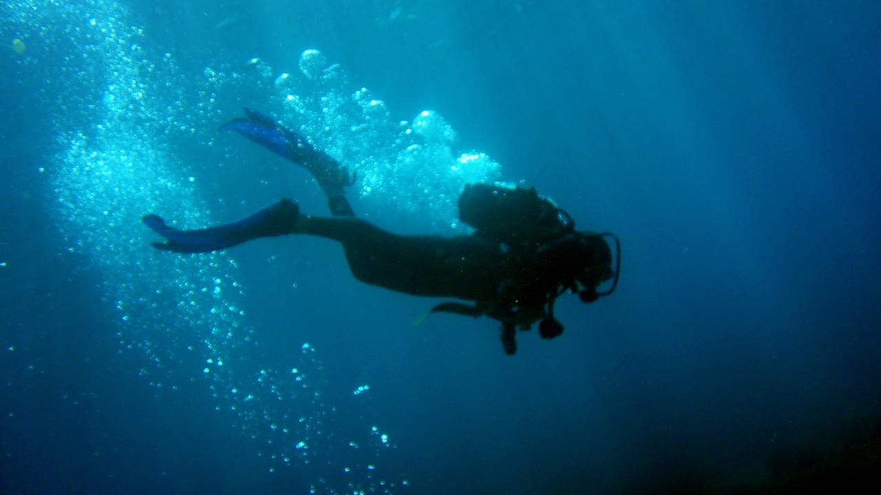 رحلة مشوقة في أعماق البحار